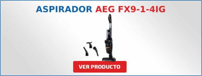 aspirador AEG FX9-1-4IG